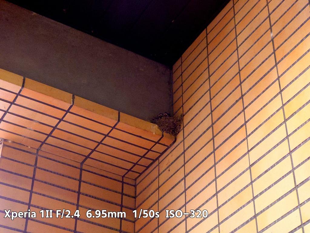 Xperia 1IIツバメの巣