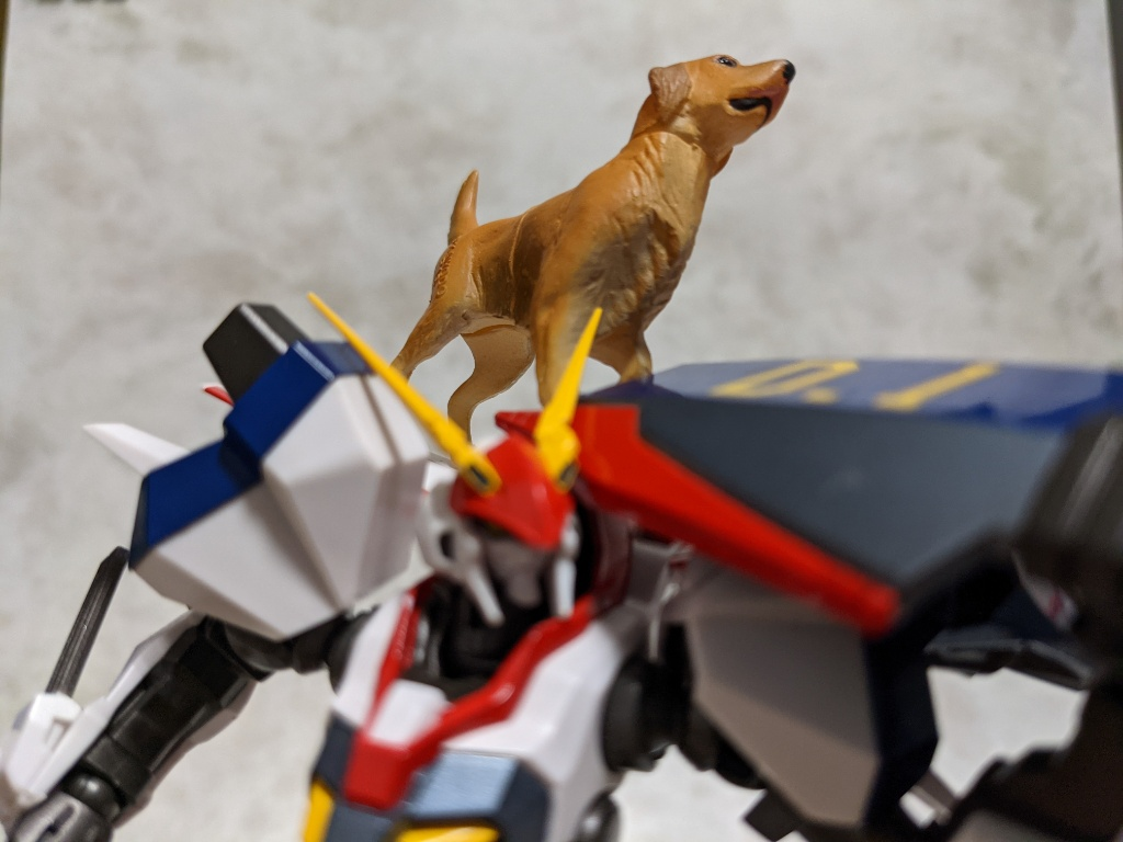 ドラグナー1カスタム犬